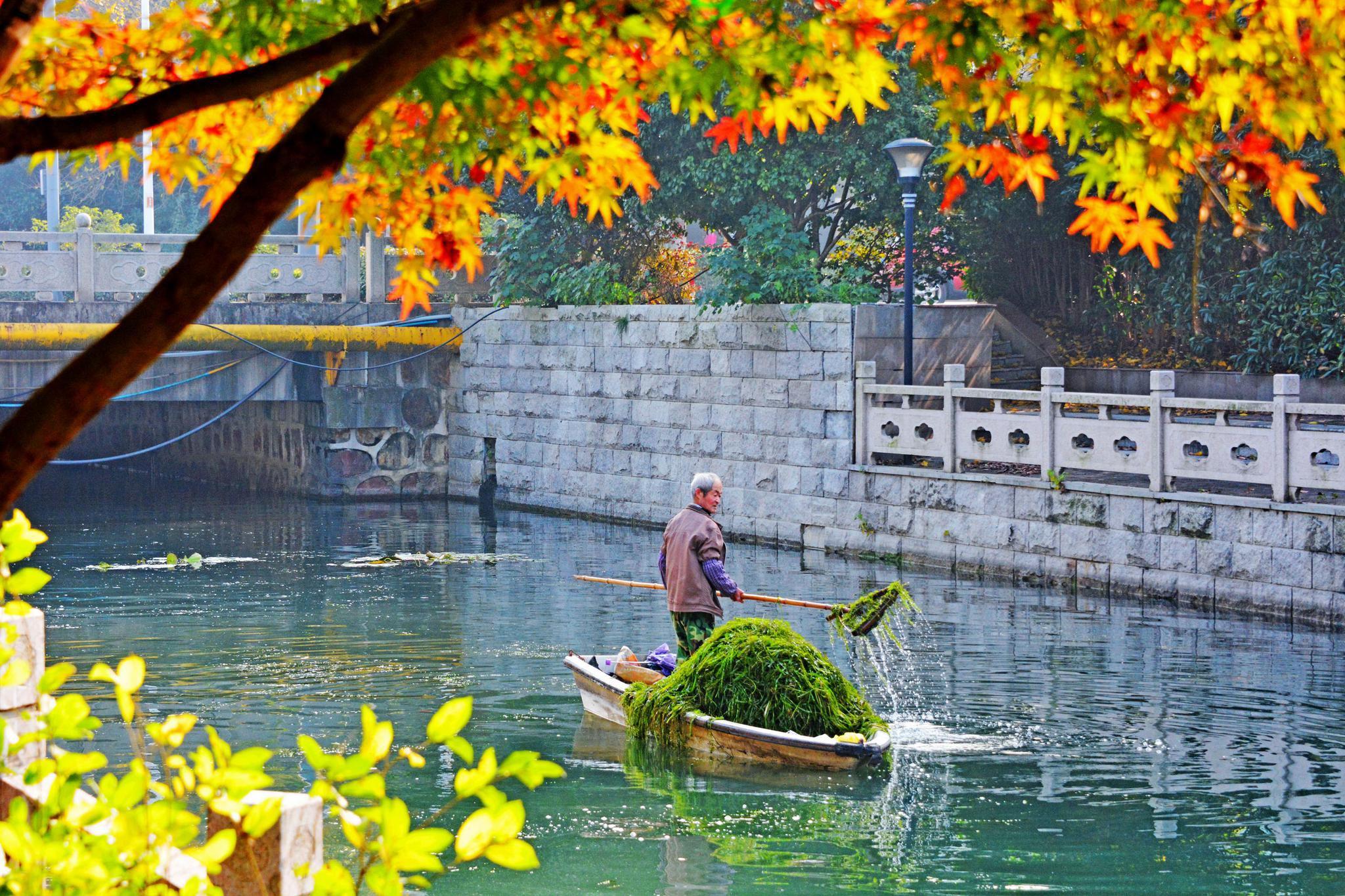 景观河的冬日美景,江苏省无锡市锡山区安镇街道。