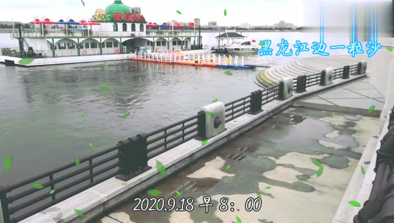第天拍摄黑龙江黑河江段水位变化,江水已降米多,明天不拍了