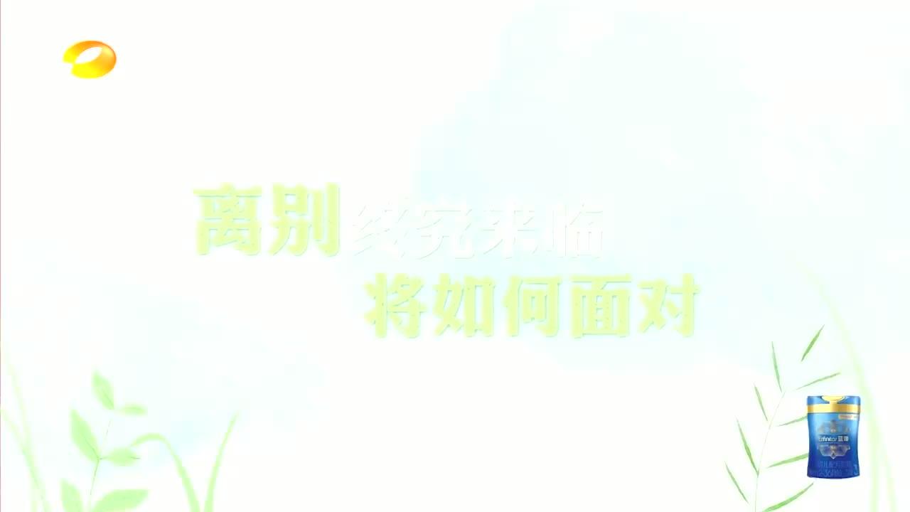 萌娃告白视频感动全场,吴奇隆郑爽,谭松韵张新成哭成一片!