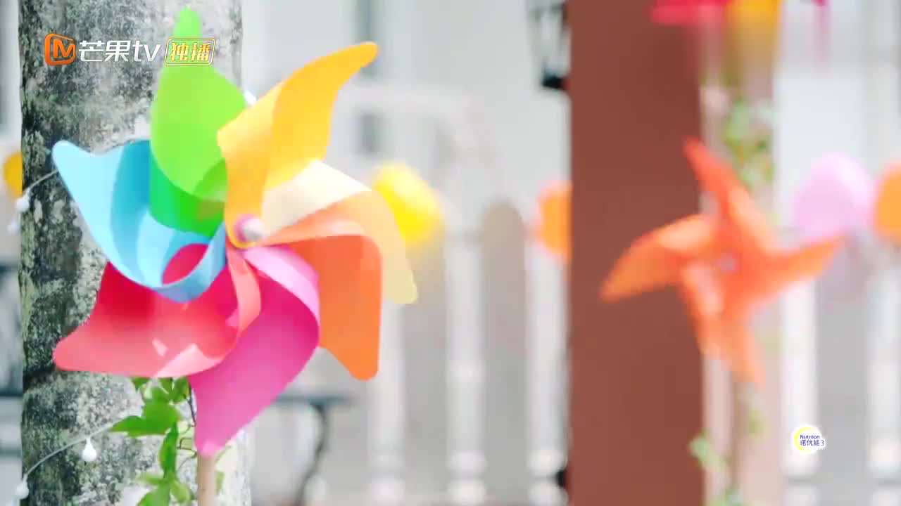婚前21天:吴尊林丽吟设计婚礼现场,满满的夏威夷风格,太有创意