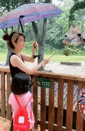 洪欣晒娃未见张丹峰,女儿紧拽妈妈裙子,48岁洪欣戴发箍似少女