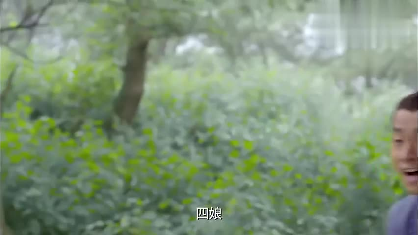 新萧十一郎:杨开泰来了,原来是赶来报信,让严屹宽躲一躲