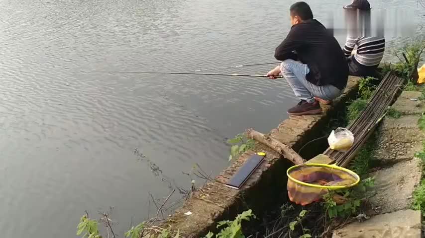 两位钓友战水库蹲在护堤上抛竿垂钓感受大鱼来袭的感觉就是爽