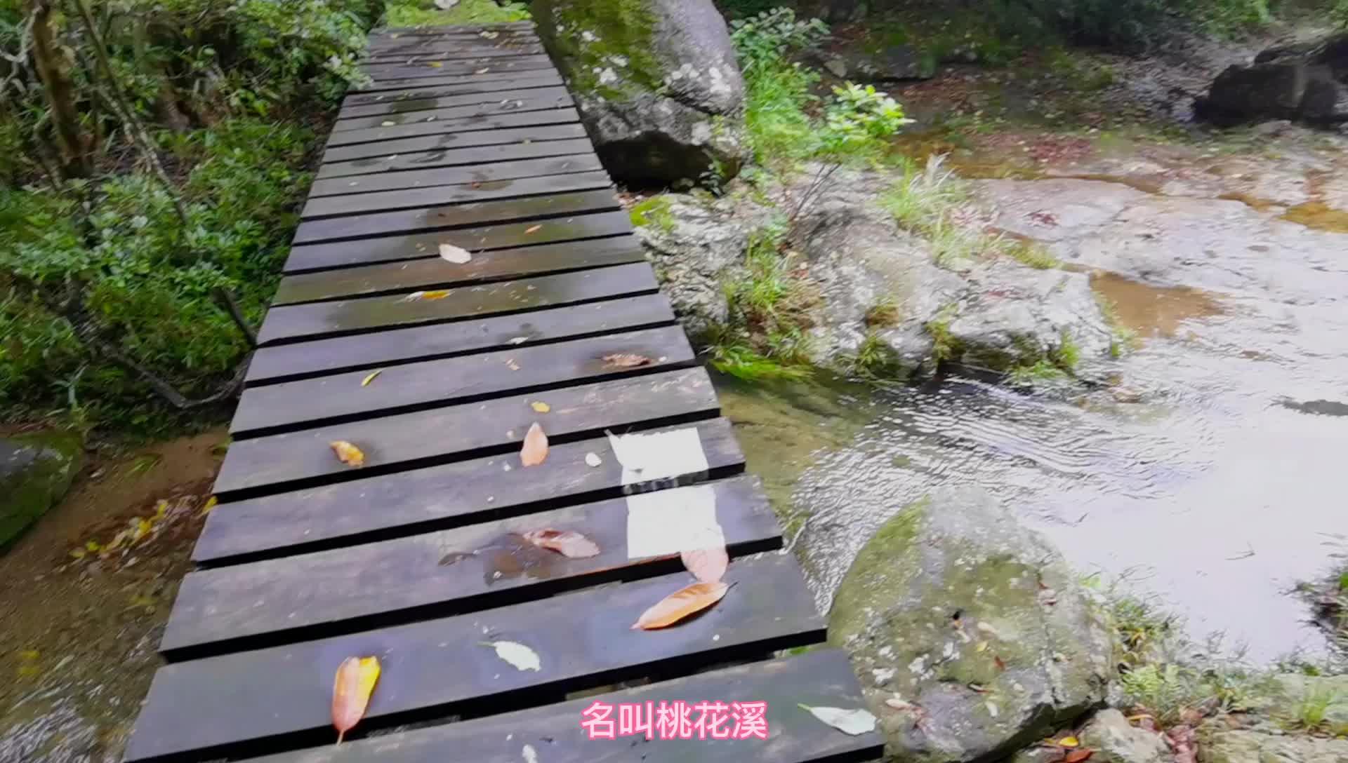 东海云顶桃花溪,五道瀑布,隐在桃花源