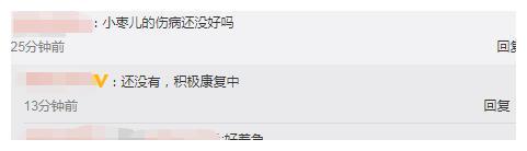 国乒内战成绩单!马龙、丁宁状态不减,刘诗雯又没参赛让球迷着急