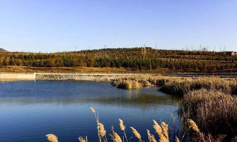 丹河湿地公园,一幅凝固着的风景画卷