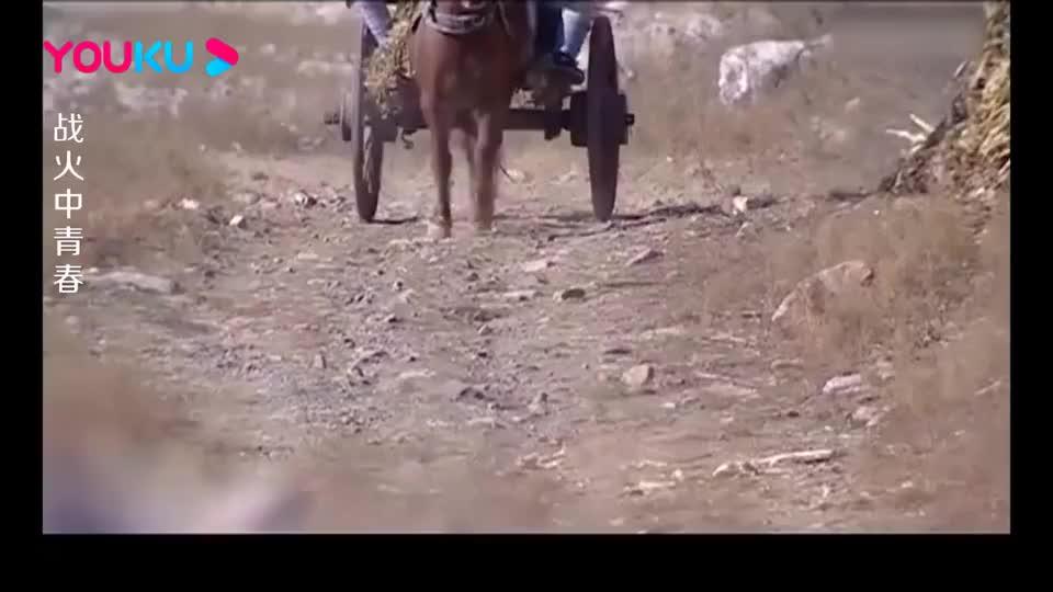八路战士驾驶马车遇巡逻队,不料一看对方的衣袖,直接拔枪射击!