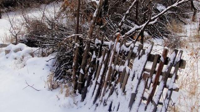 清代诗人在风雪之夜写的一首诗,天下游子读后无不痛哭失声
