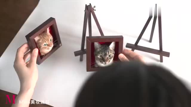 超逼真的羊毛毡猫头,看着都好治愈,一起来学习下戳出可爱的喵咪