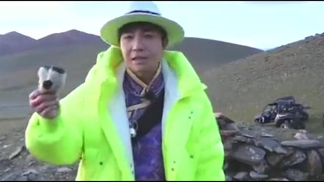 《极限挑战》出事了,刘宁宇节目采摘国家二级保护植物