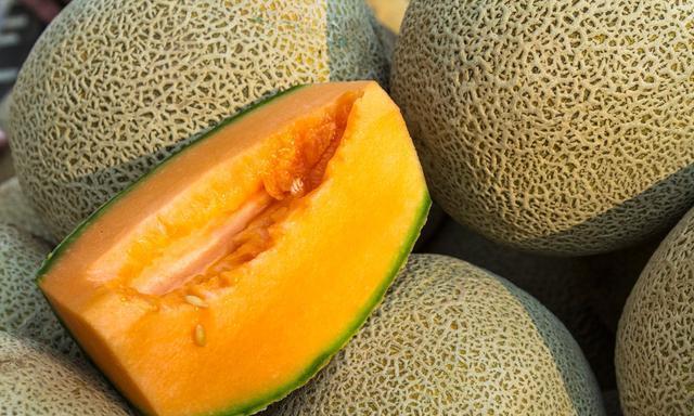 日光温室甜瓜有机基质栽培,以及坐果期管理技术,你了解多少?