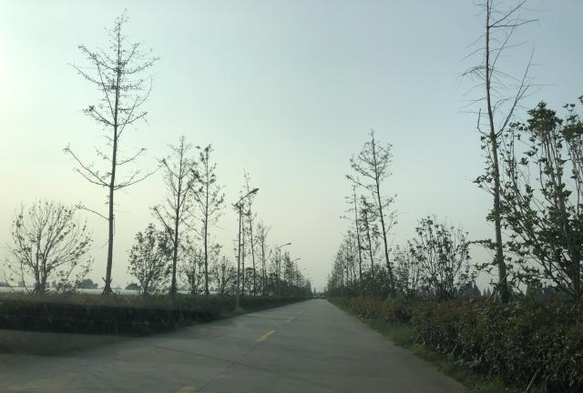 美丽的乡村系列——嘉善县干窑镇范东村王家浜
