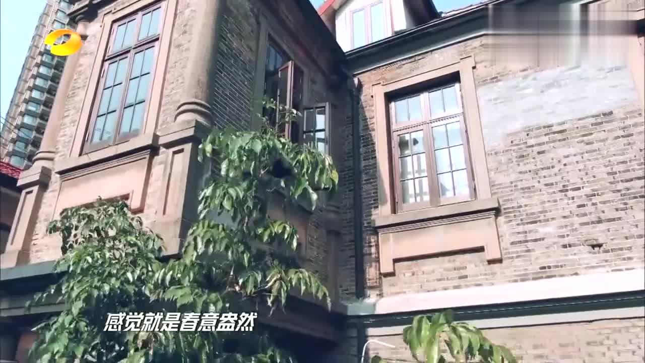 安家老洋房主人曝光,钱枫张萌现场参观,书房餐厅太震撼了!