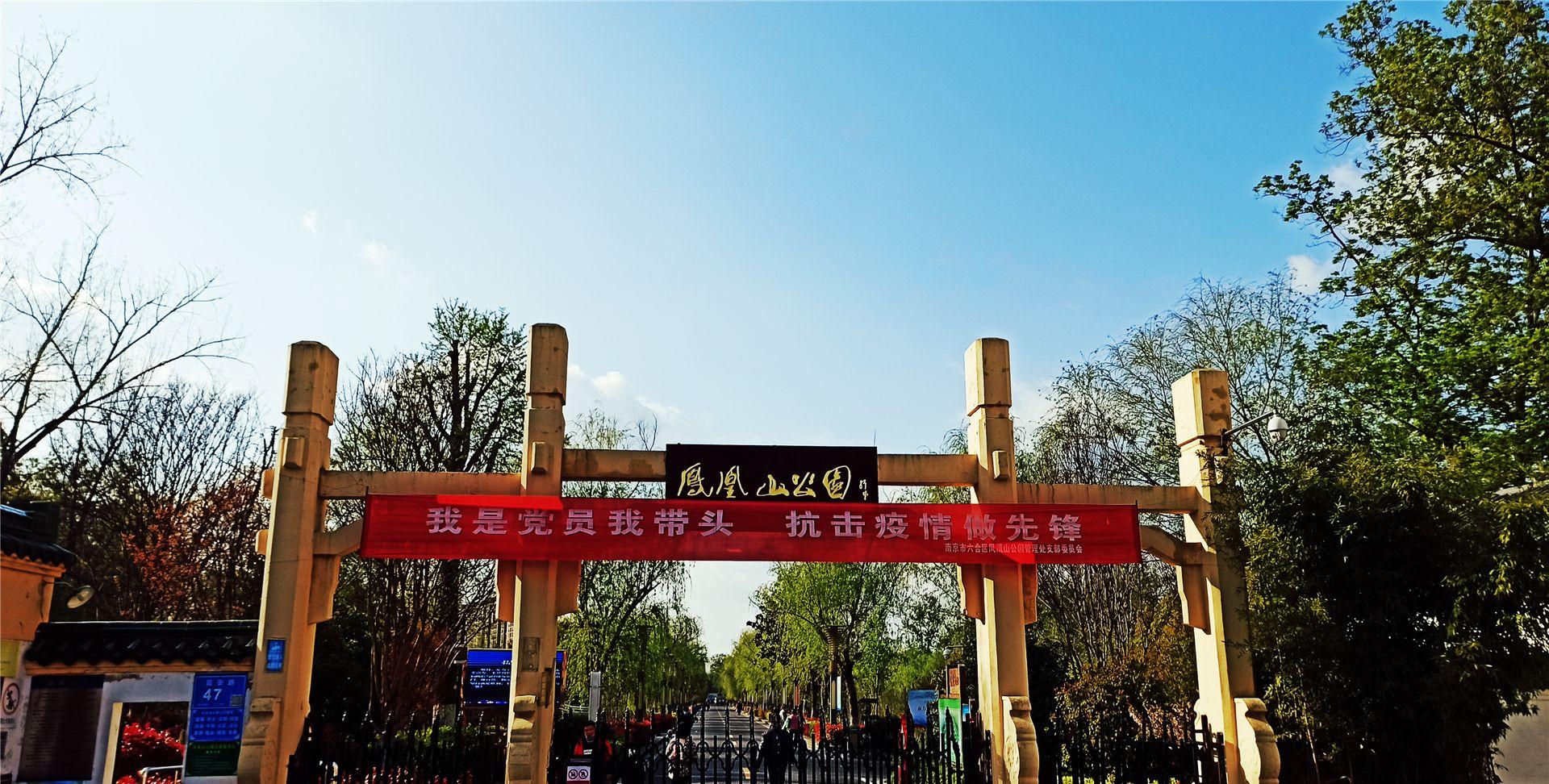 春天里的美景——南京六合凤凰山公园