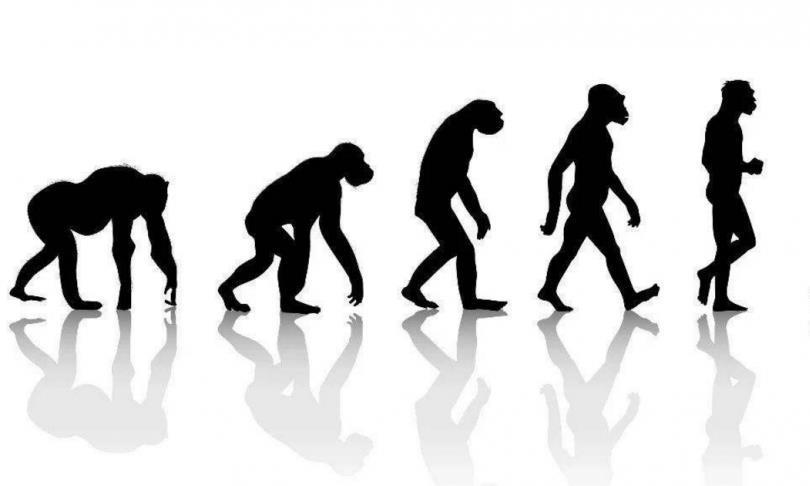 """全人类都是同位母亲?线粒体基因不会说谎,""""夏娃理论""""或能成立"""