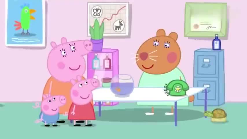 小猪佩奇仓鼠兽医开飞机去治病不料只是翻不了身太尴尬了