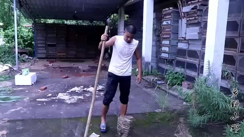 小邓改造农村老房子第2天,把这块荒地整理出来,打算在这建狗窝