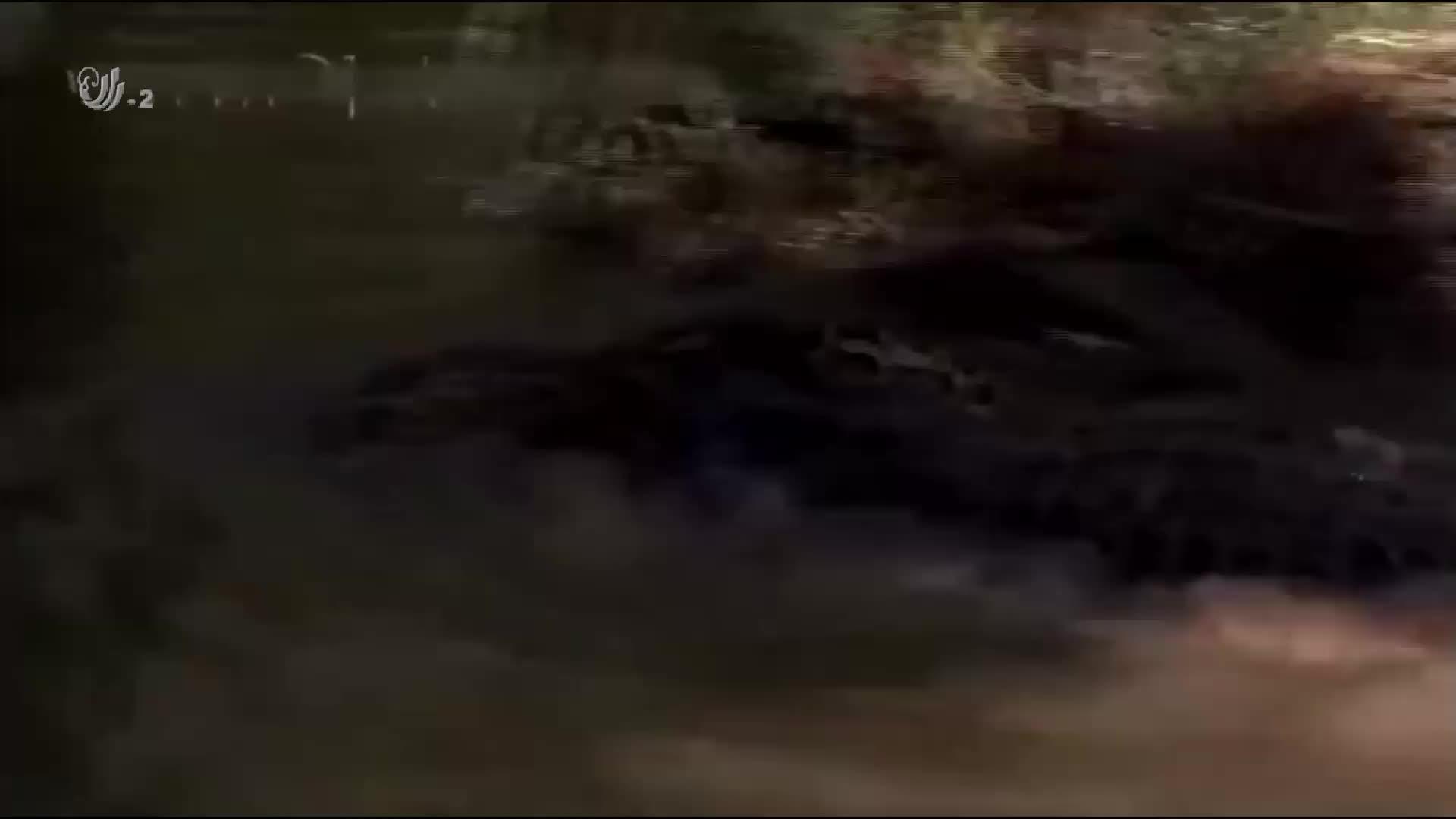 鳄鱼大战蟒蛇,双方从岸上一直打到河里,场面十分震撼!
