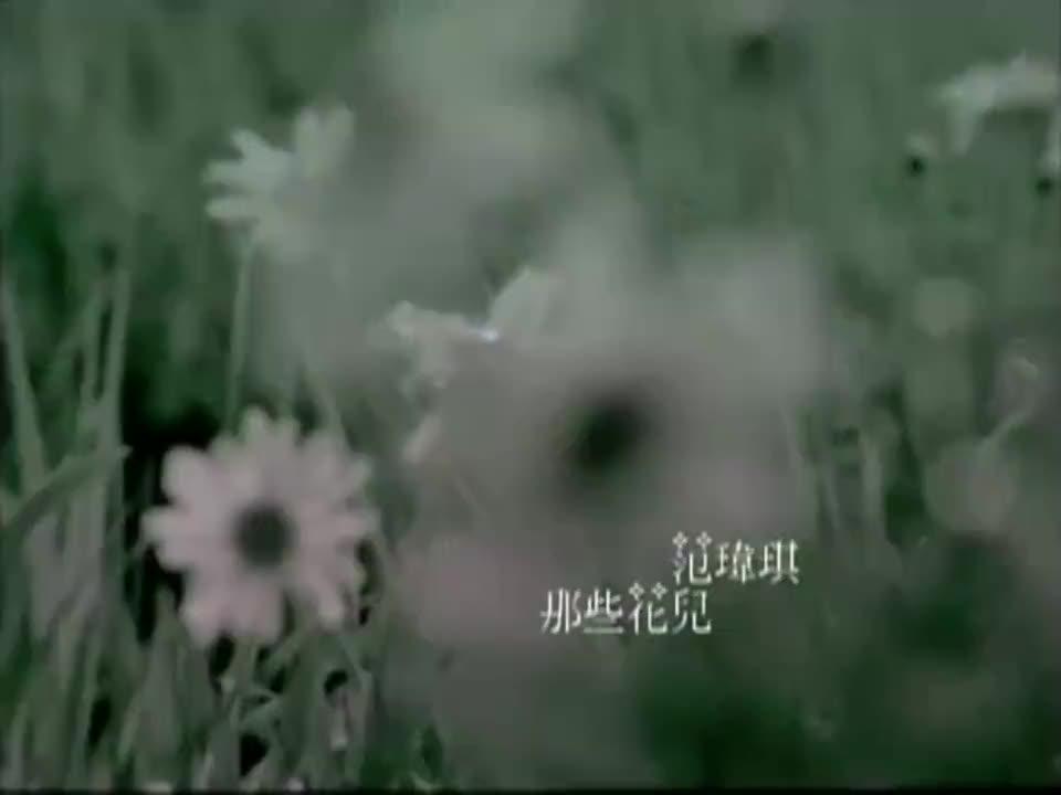 非常喜欢范玮琪这一版《那些花儿》啥时候听都好听!