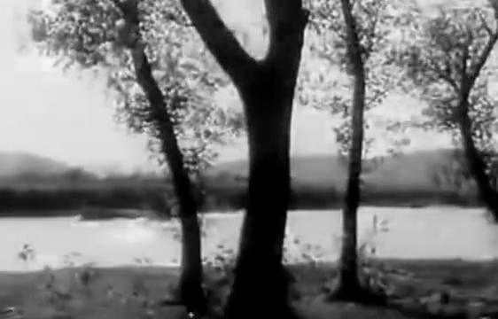 1978年拍摄《儿子孙子和种子》张秀英一家快乐生活