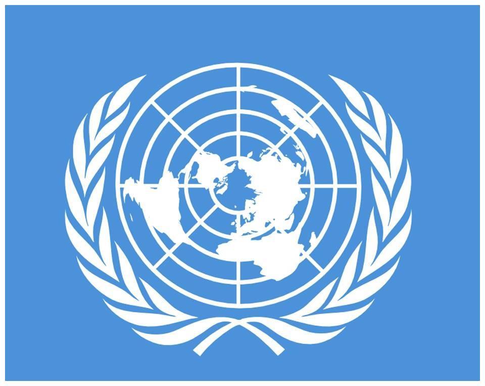 把联合国总部迁到中国会怎样?此言一出,网友都予以反对