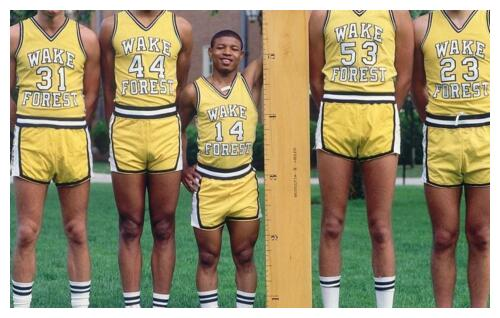 nba最矮的球员:蒂尼博格斯1.6米 曾盖帽2.13米对手