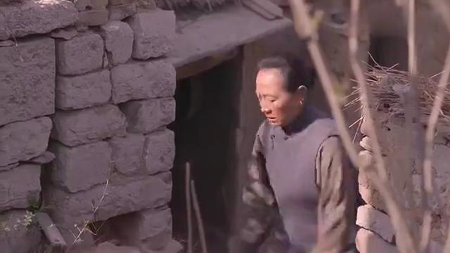 老农民:灯儿躲在家中不出门,父母打算给她寻亲事,又要求人啊!