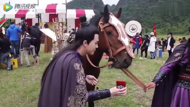 《双世宠妃2》:墨靖轩现场和马儿合影,好逗啊