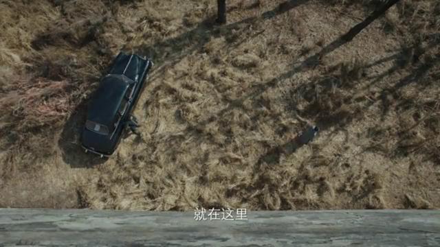 新世界:原来柳如丝的妹妹是个狙击手,冯青波被她救了