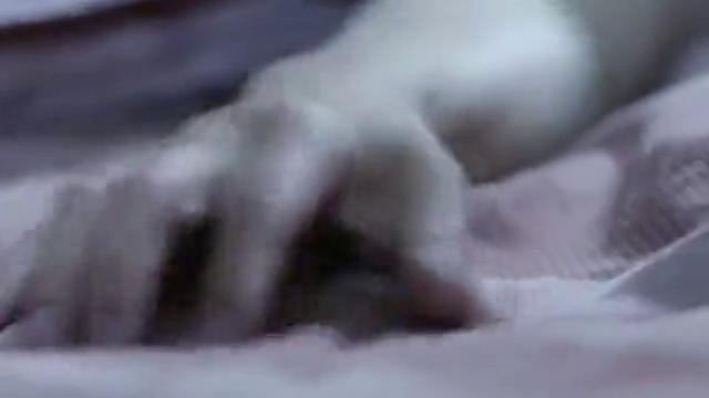 丈夫打鼾怕吵醒妻子,不料一摸旁边的枕头,才想到妻子早已去世
