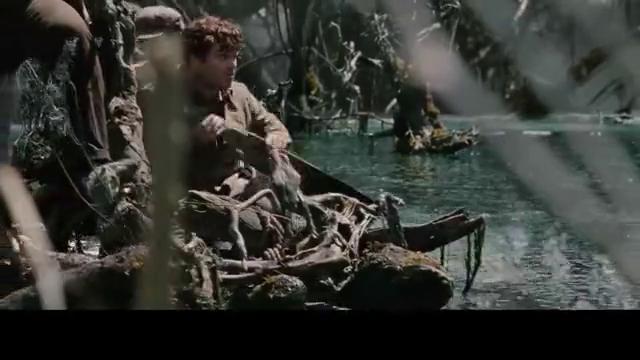 金刚:水里面藏着人一样大的皮皮虾,还有几米高的食人鱼