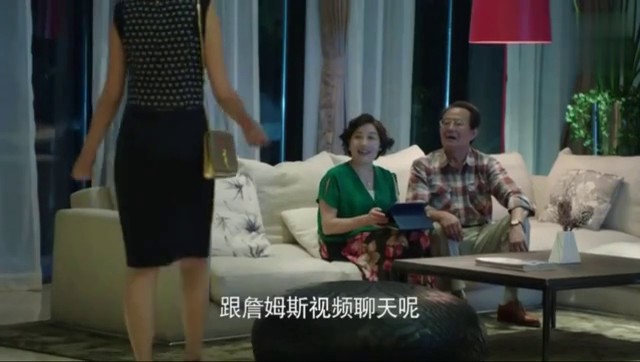 丈母娘和女婿视频聊天