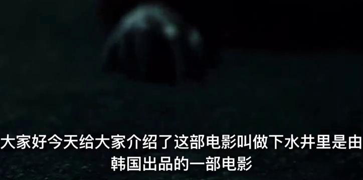 《下水道》获戛纳电影节评委大奖,安杰依瓦伊达战争三部曲第二部