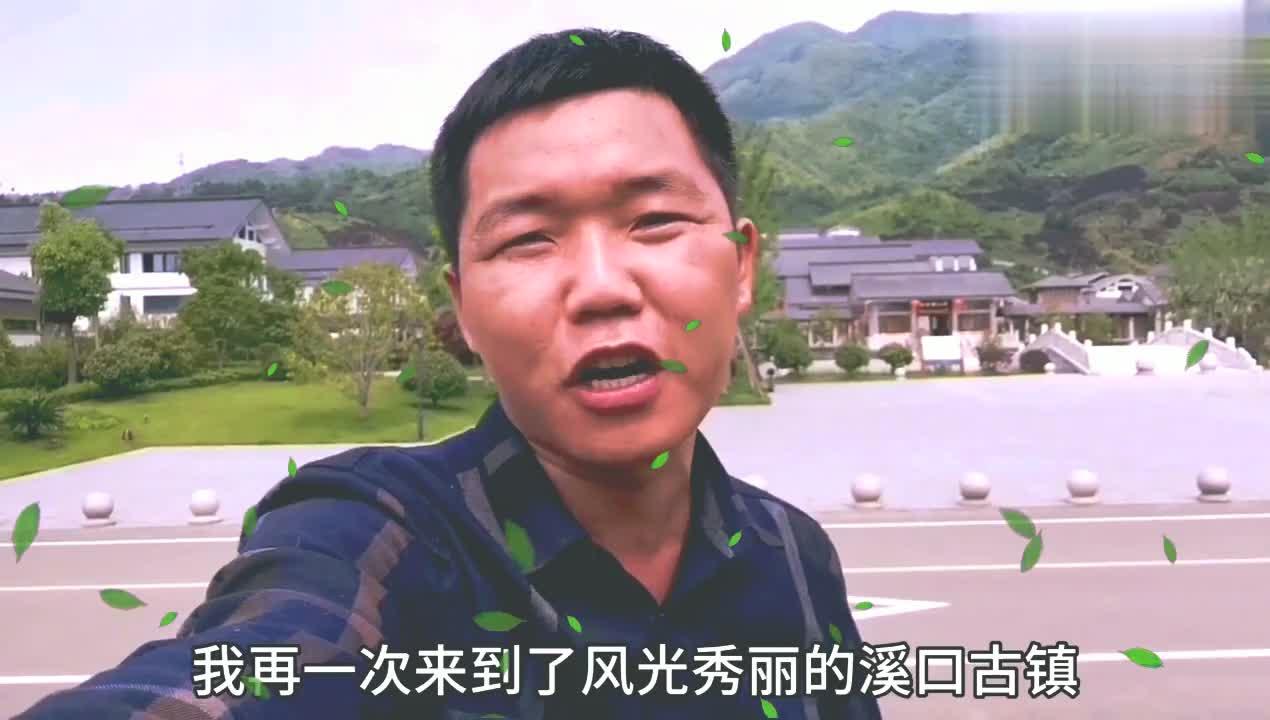 探访浙江一所特别的大学,浙江佛学院,而且还是四年制本科大学