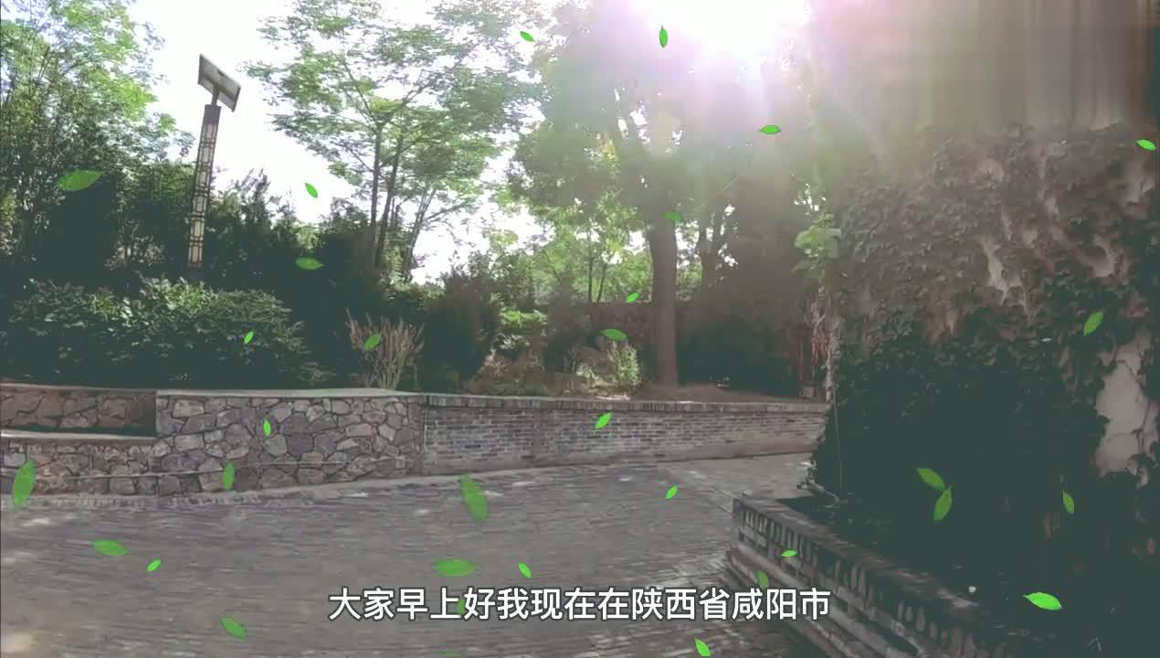 陕西礼泉袁家村实拍秦琼墓,才知道每年春节贴的门神在这儿入土了