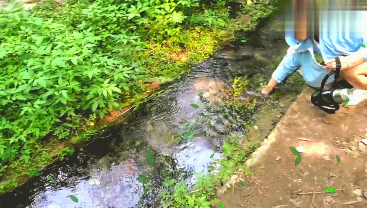 保定满城这个景点已经被拍烂了,小溪流水峡谷悠长,你来过吗