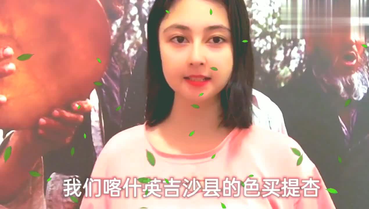 你知道中国第一杏么那就是新疆喀什英吉沙县色麦提杏
