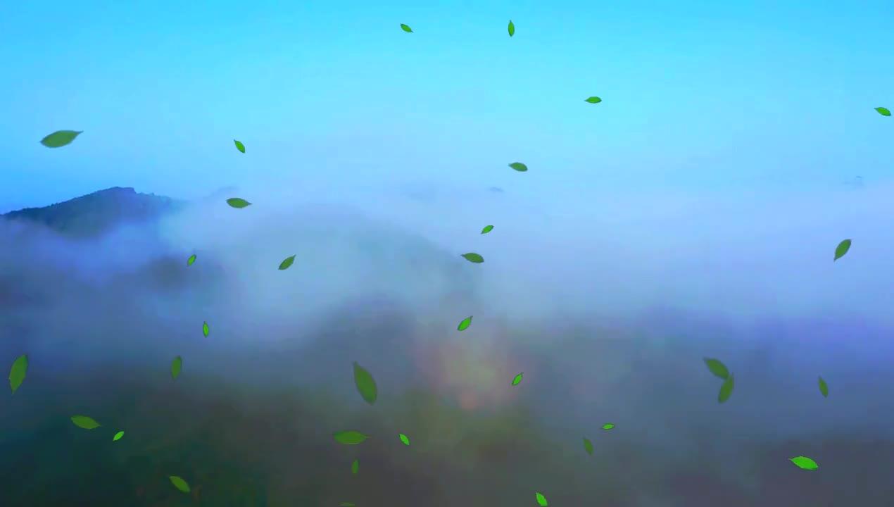 白云深处是金村——新昌县小将镇金村雨后的清晨,真美!