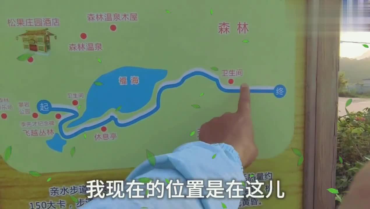 福州旗山森林康养步道号线,轻度休闲景点,全长米