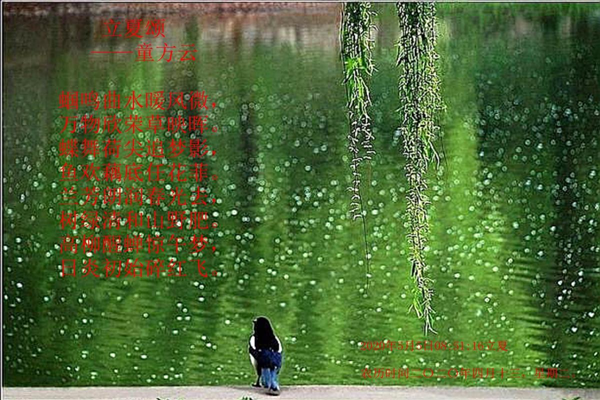 麦黄秧碧百家衣,已热犹寒四月时——2020年5月5日08:51:16立夏