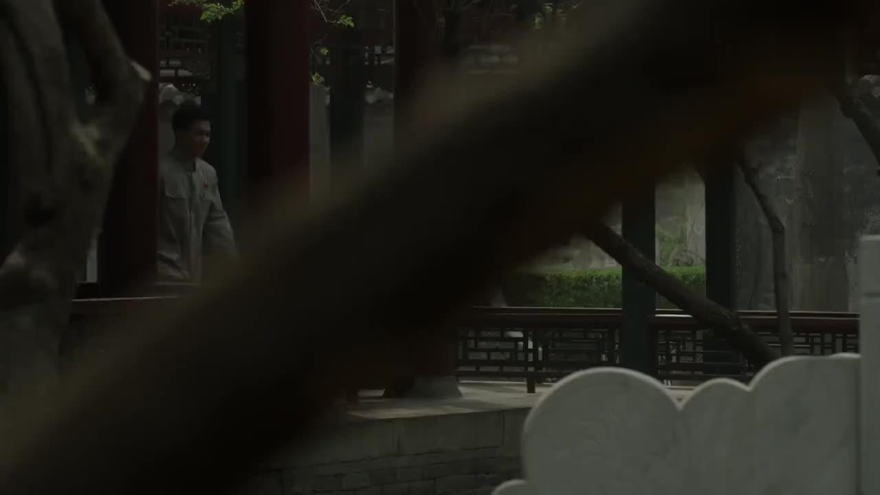 海棠依旧:世锦赛中国乒乓球获得金牌,周总理激动地唱起了歌曲!