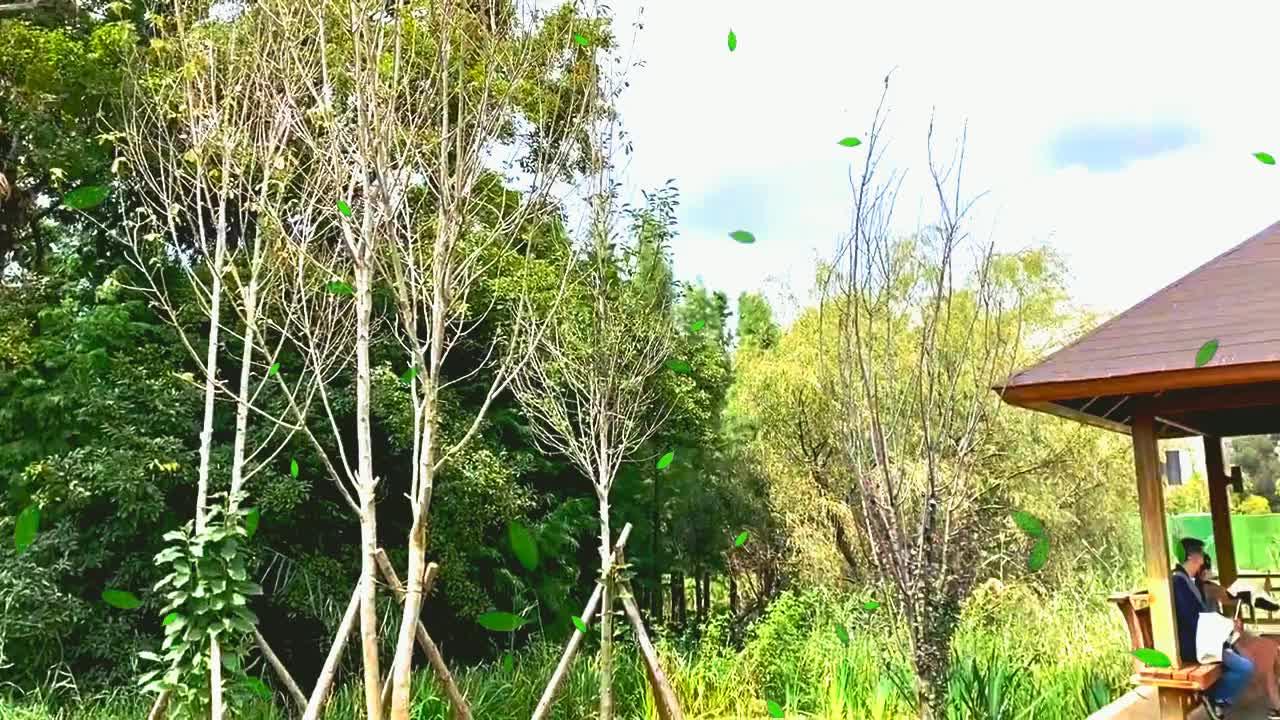 海东湿地保护区,九月,放飞自我