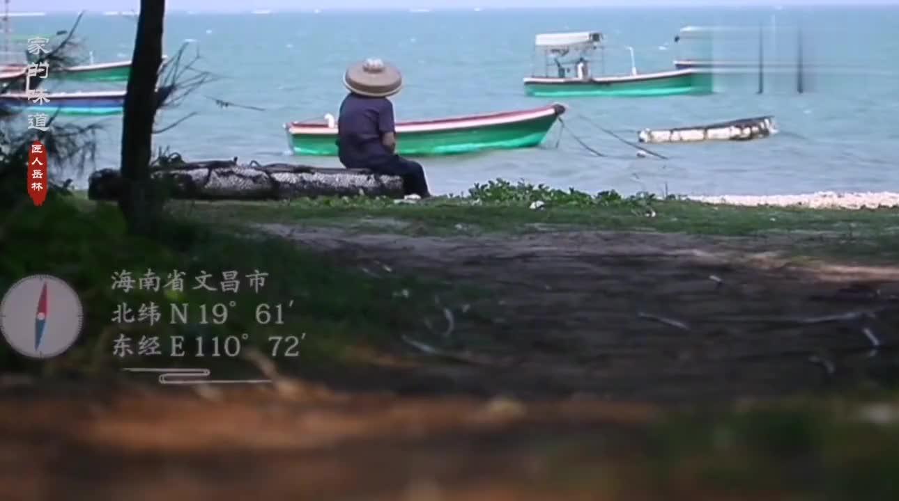 海南文昌海上森林,人们守护红树林一方太平,它便还人们一片绿荫