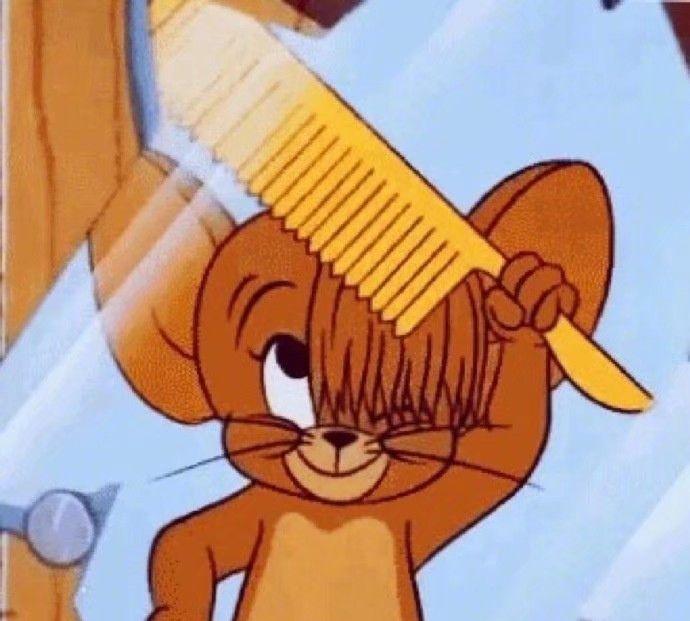 毛和老鼠这部动画片你看过没有呢