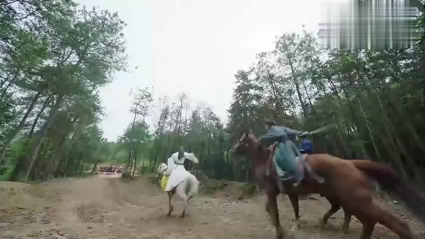 司马清风追杀谢客远,不料被花满天救下,这把司马清风气得像头驴