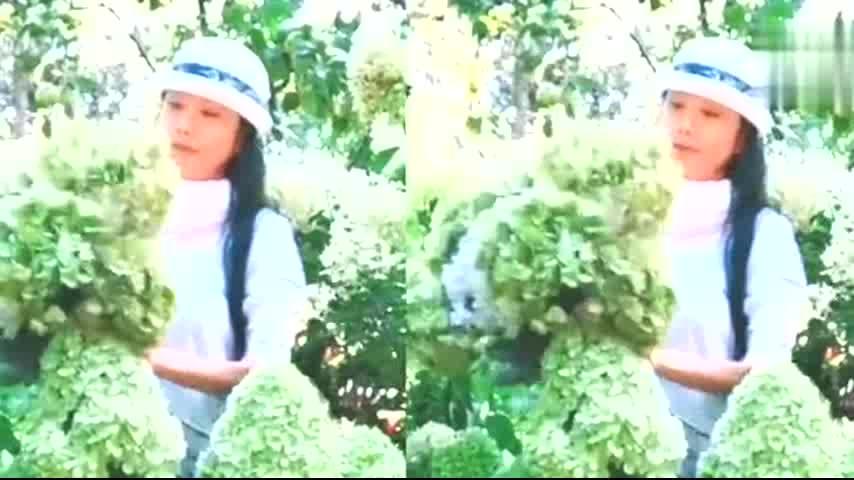 杨丽萍置身花丛宛如仙子,61岁身材纤瘦容貌不老,状态堪比小姑娘
