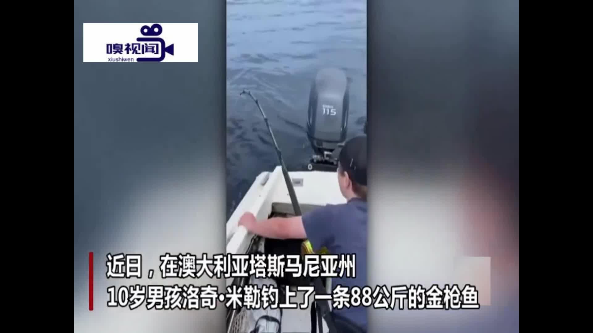 澳大利亚:10岁男孩花3小时钓到88公斤巨型金枪鱼打破纪录