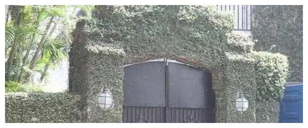 郭晶晶香港豪宅大气温馨,大门被藤蔓围绕,宅院大到令人羡慕