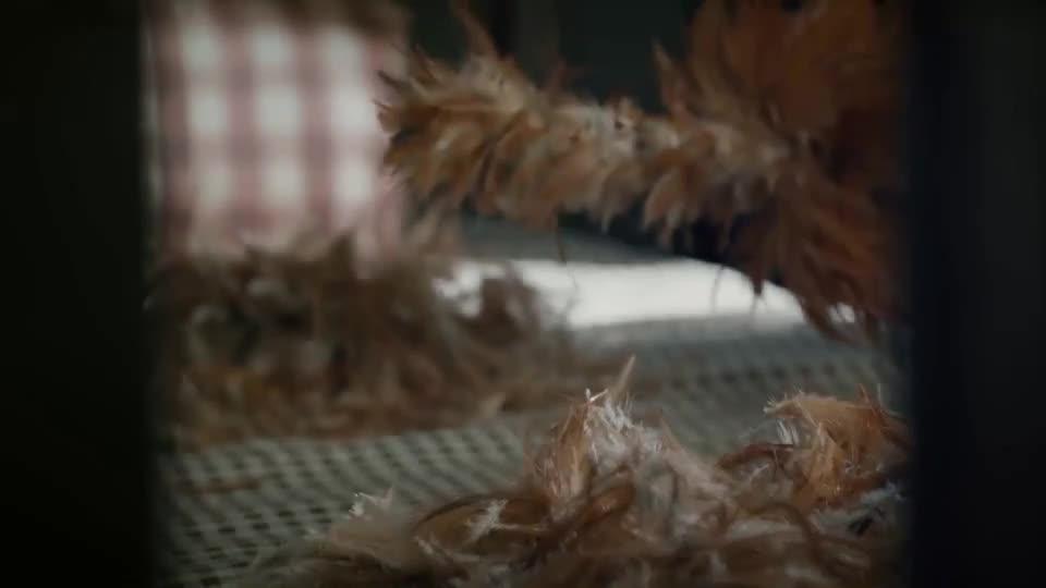 刘振声不敢相信何玛丽真的会嫁给他就数鸡毛掸子的羽毛来判断真假
