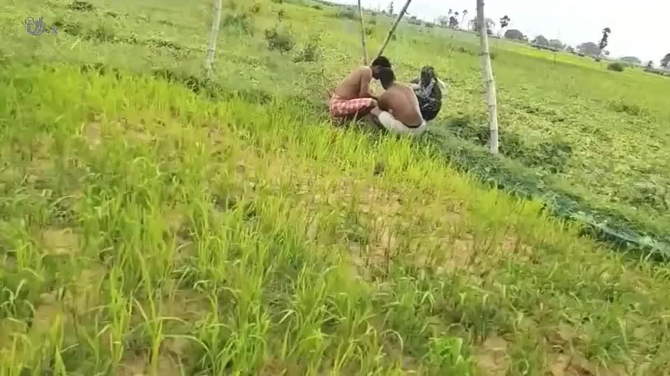 小猴子被拦网缠住,幸亏3名男子及时解救,这才安然无恙